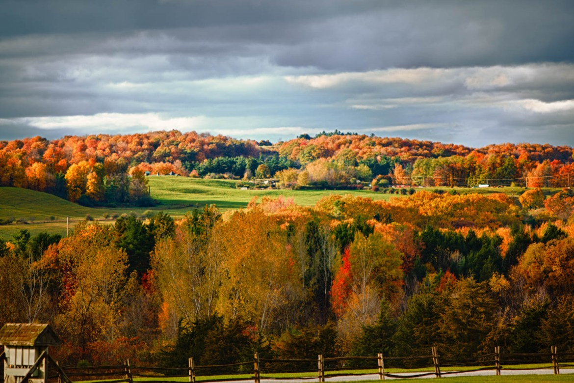Autumn leaves of Vermont's rolling hills
