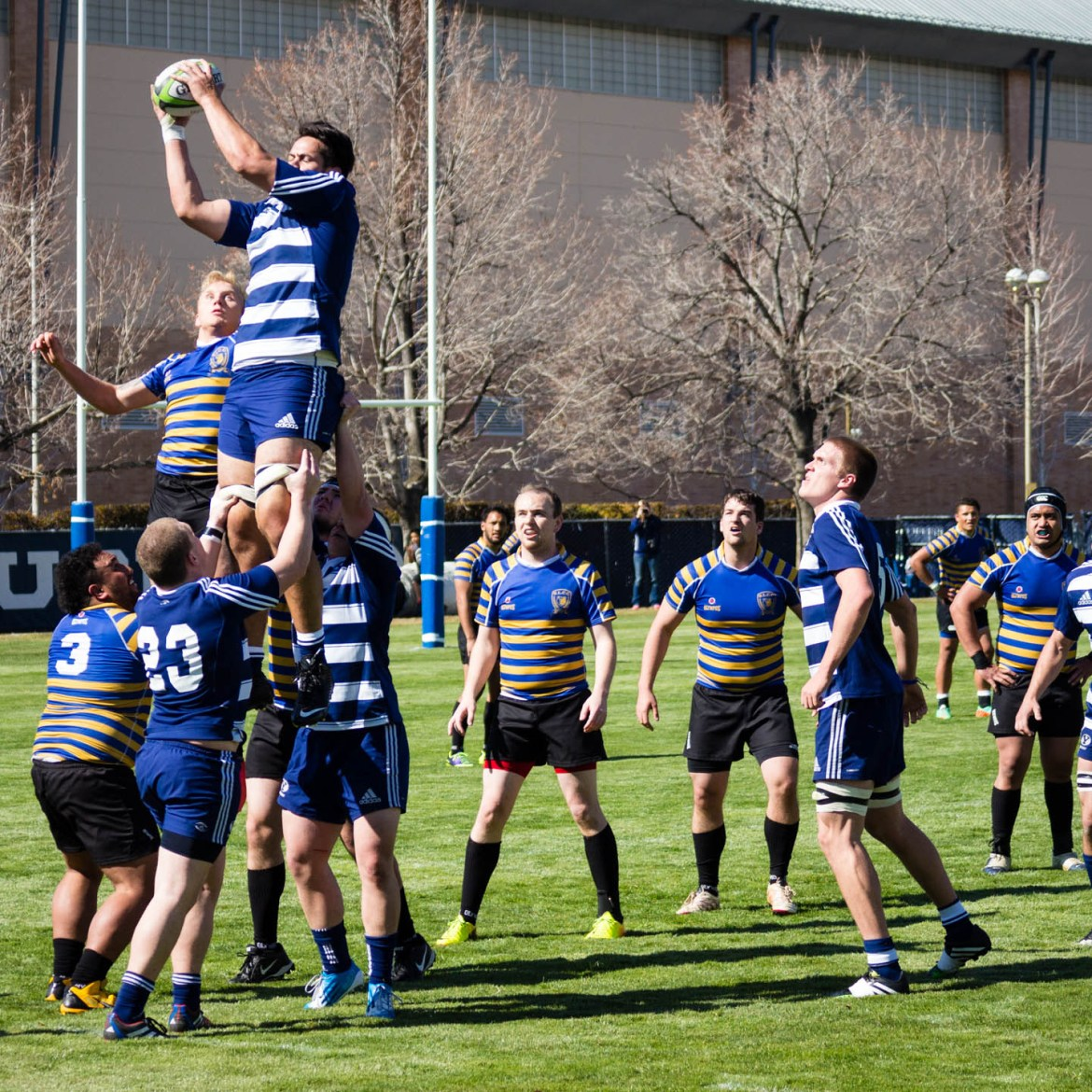 Rugby line-out