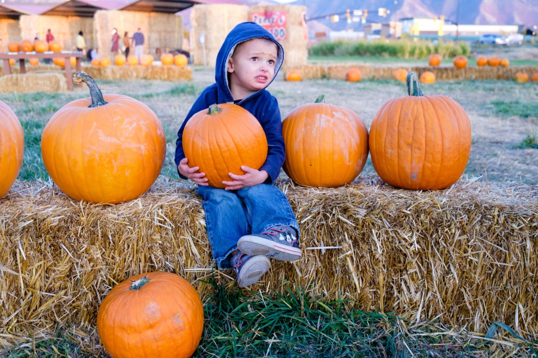 Luke was promised a pumpkin