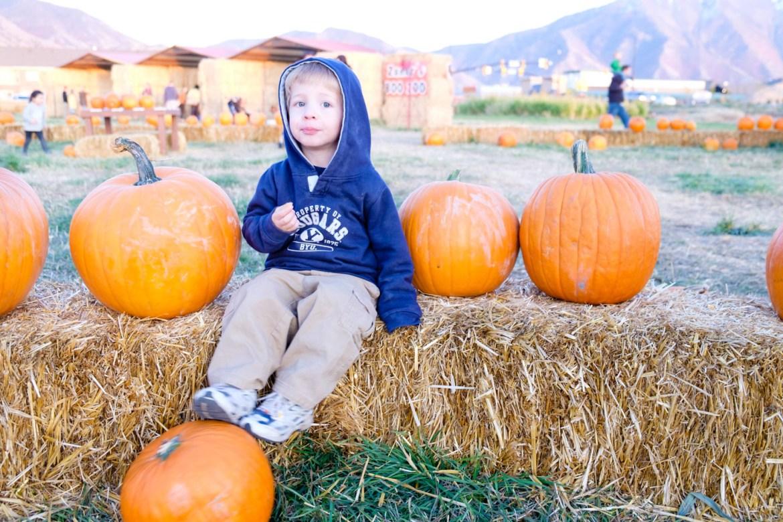 Hanging with pumpkins