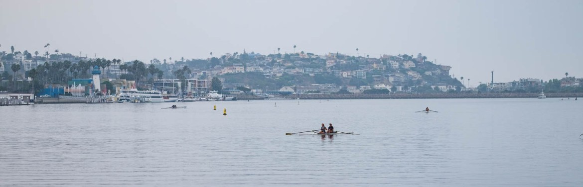 Rowers in the Marina