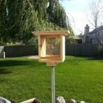 BirdFeeder (3)
