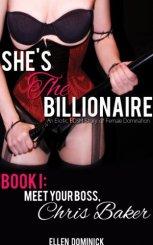 She's The Billionaire 1