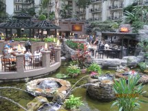 Gaylord Opryland Hotel Water Park