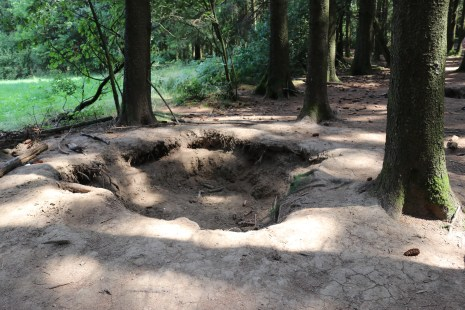 101st Airborne foxholes