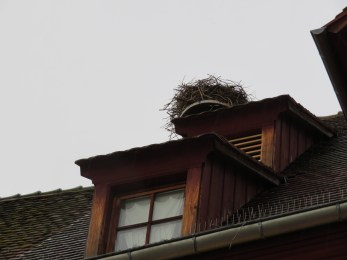 One of the many stork nests we saw in France.