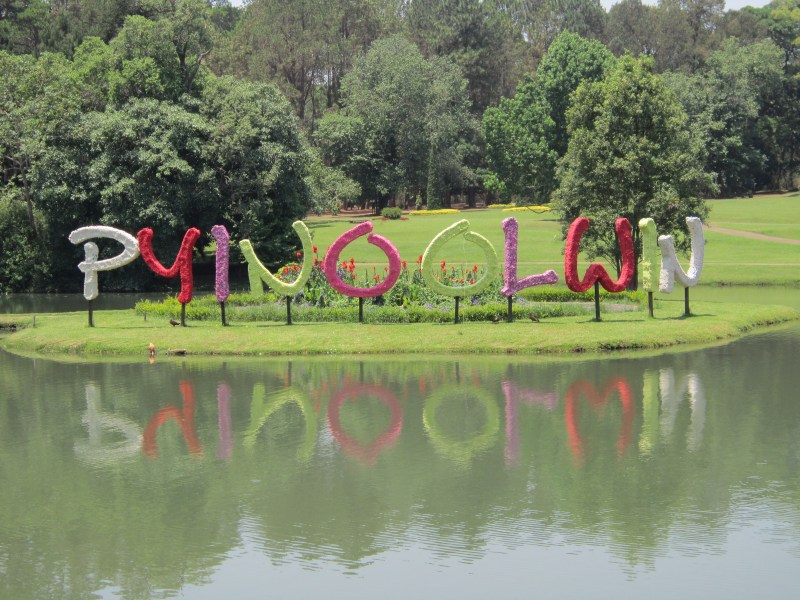 Pyin Oo Lwin spelt by floral decorations, Kandawgyi Botanical Gardens , Myanmar