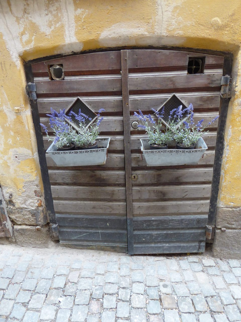 Yellow building and brown Doorway with purple flowers in baskets, Gamla Stan, Stockholm