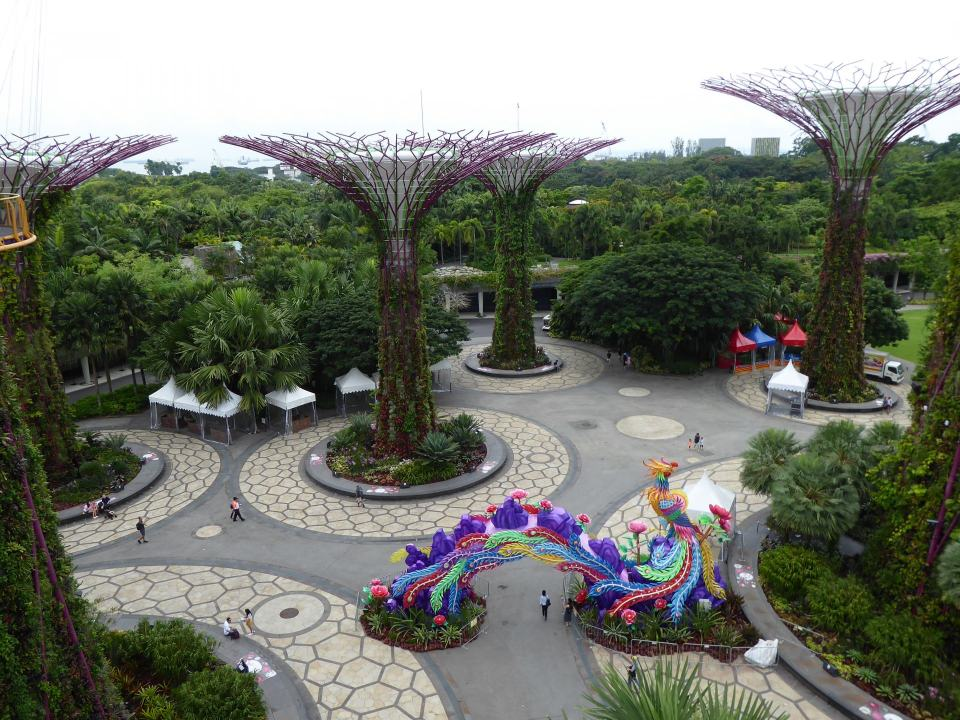 A view from inside Singapore's Gardens By The Bay. Showing several of the man made tree's and a multi coloured dragon statue.