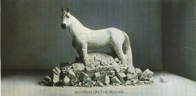 white-horse-on-the-rocks*