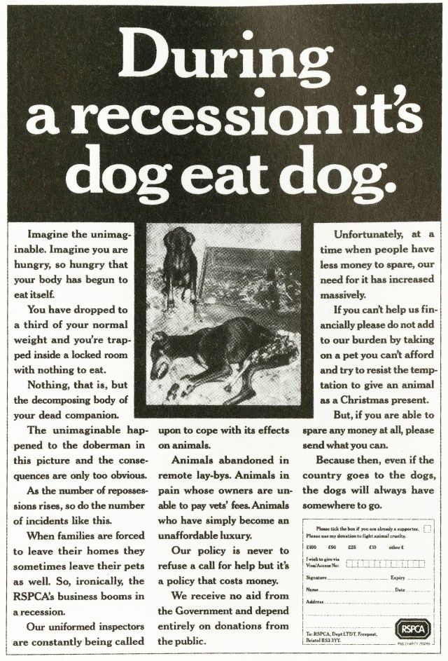 'During The Recession' RSPCA, Peter Souter, AMV-01.jpg