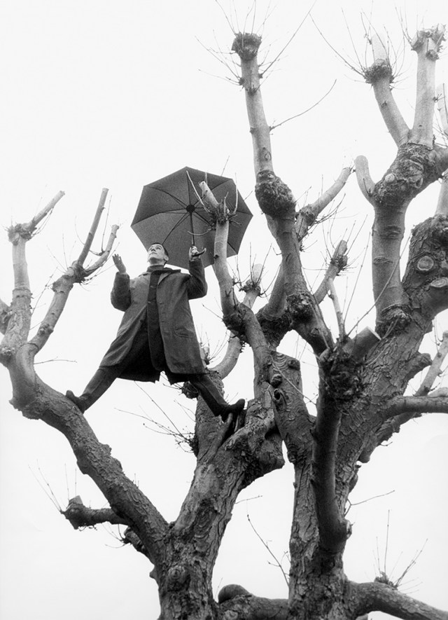 'Umbrella Tree' Paris, Matsuda,1992, ©geof kern
