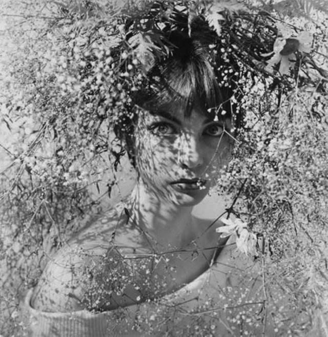 1a. ', Saul Leiter:Dave Dye.