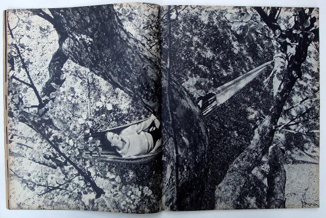 4. ', Saul Leiter:Dave Dye