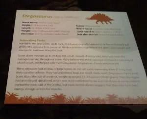 Stegosaurus Information