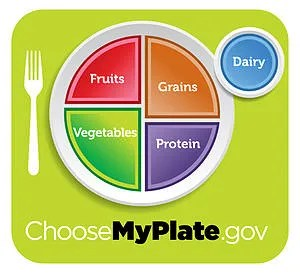USDA MyPlate nutritional guide icon