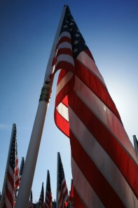 Most of the flag poles had names of Oregon Veterans who died at war. Some had up to four names on them.