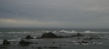 See the sea lions, seals and birds in from of the big rock? The waves in the background are still probably 20 feet high.