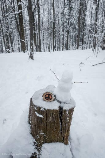Trail marker with small snow man someone created during the day