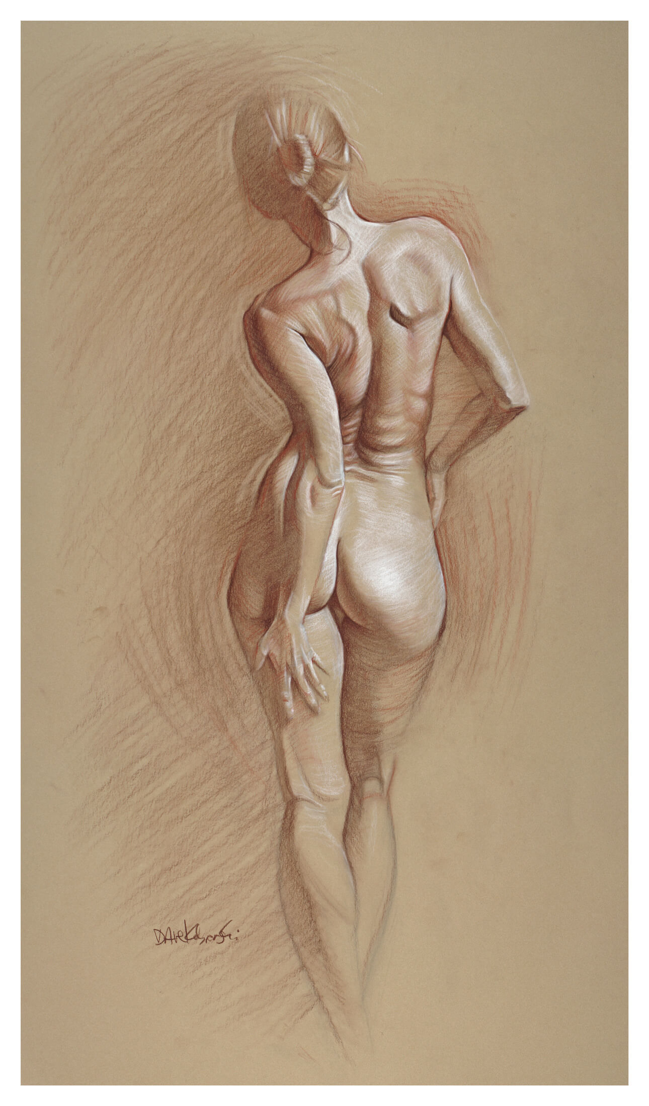 life drawing anatomy and
