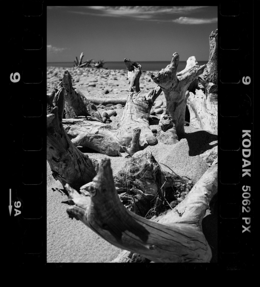 Real Film Border Scans – Dave Lawrence Photography