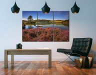 Purple Heather Around Loch - 3 Panel Canvas on Wall