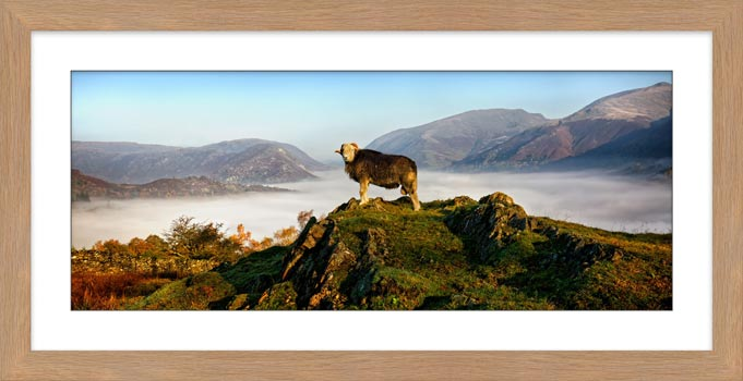 King of Cumbria - Framed Print