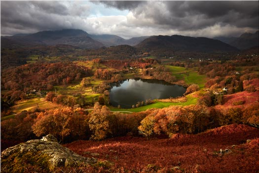 Loughrigg Tarn in Autumn - Canvas Print
