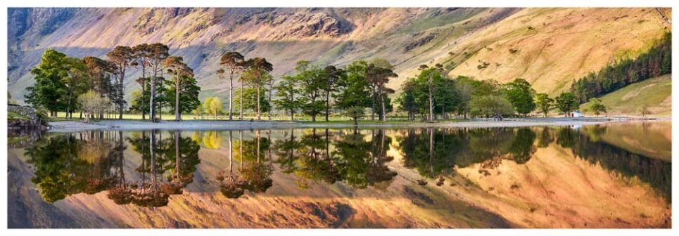 Golden Dawn Buttermere - Lake District Print