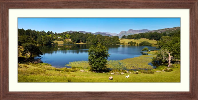 Loughrigg Tarn in Summer - Framed Print with Mount