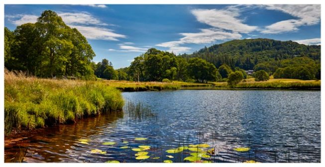 River Brathay Summers Afternoon - Lake District Print