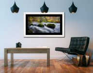 River Rothay in White Moss Woods - Framed Print with Mount on Wall