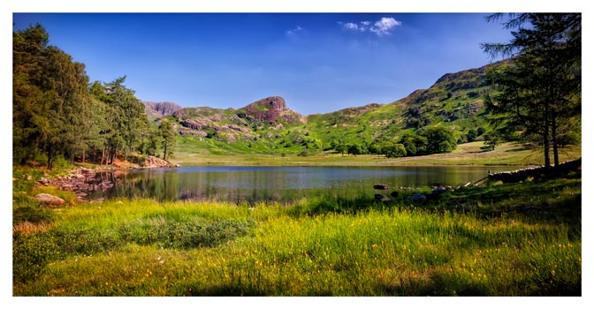 Blea Tarn Summer Meadow - Lake District Print