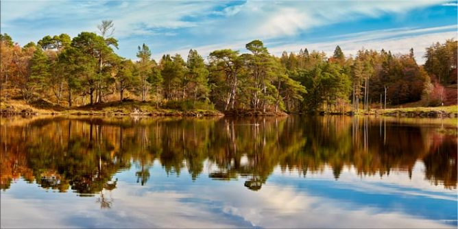 Tarn Hows Autumn Reflections - Lake District Canvas