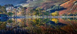 Buttermere Autumn Reflections Mug