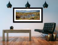 Tarn Hows Spring Sunshine - Framed Print with Mount on Wall
