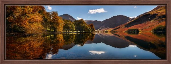 Buttermere Autumn Trees - Modern Print