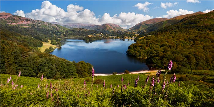 Summer at Grasmere - Canvas Print