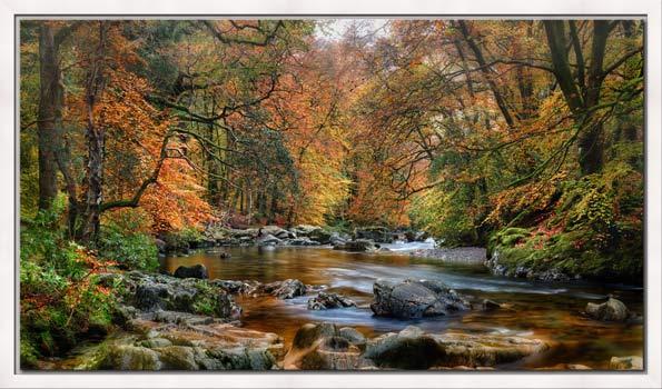 River Esk in Autumn - Modern Print