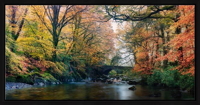River Esk Bridge in Autumn - Modern Print