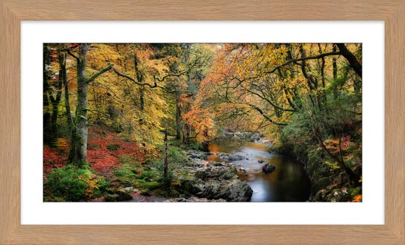 Autumn Woodlands of Eskdale - Framed Print with Mount