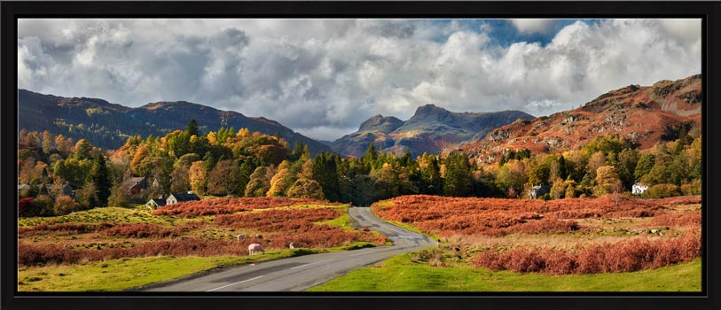 Elterwater common in autumn with the Langdale Pikes in the distance