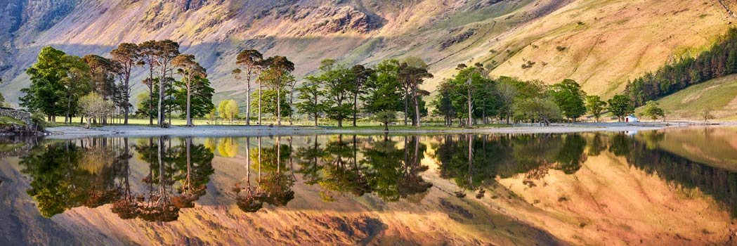Golden Dawn Buttermere - UltraHD Print with Aluminium Backing