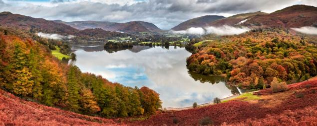 Trees of Grasmere - UltraHD Print