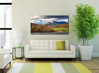 Golden Trees of Langdale - Print Aluminium Backing With Acrylic Glazing on Wall