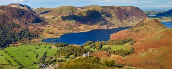 Contemplating Crummock Water - Canvas Print