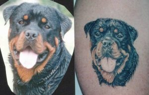 dog portrait tattoo Tauranga New Zealand
