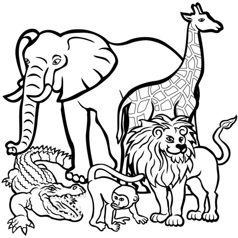 Animal Coloring Pages African Animals Coloring Pages Free Printable Pictures