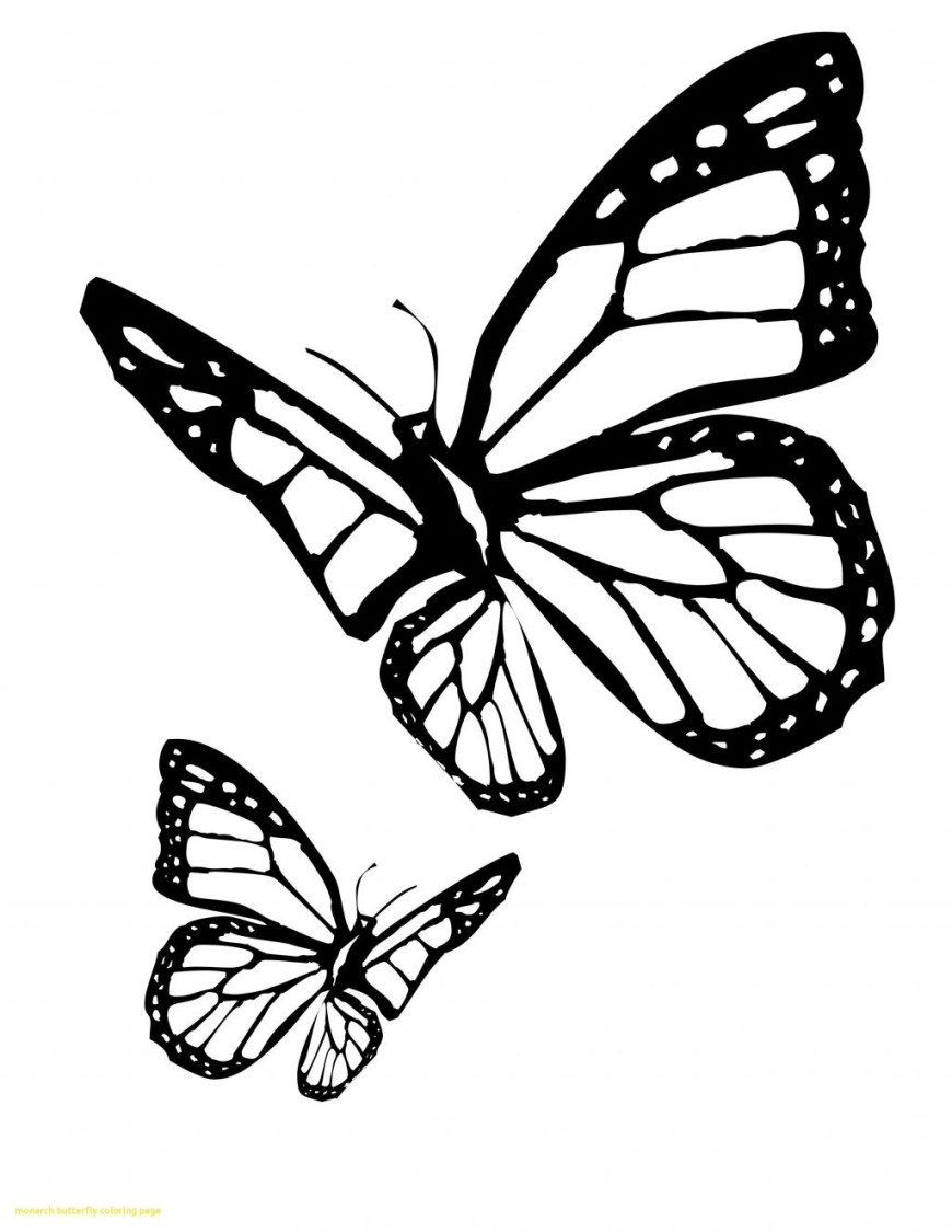 Butterflies Coloring Pages Butterfly Coloring Pages For Preschoolers Free Printable Colouring