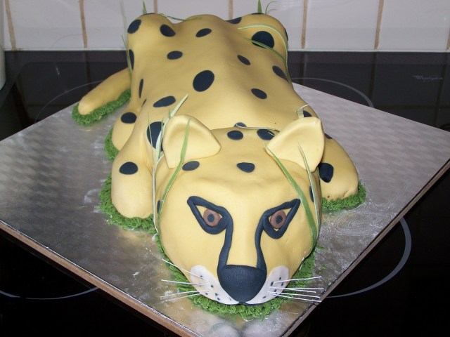 Cheetah Birthday Cake Interesting Cheetah Birthday Cake Floyddeanflycasting